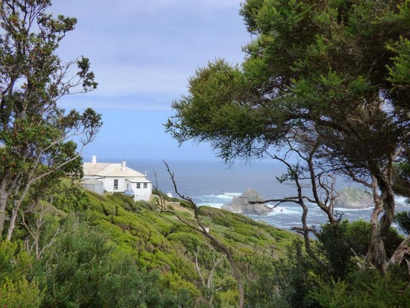 Остров в Тасмании предоставит желающей паре дом и работу