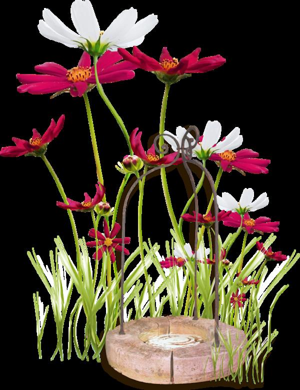 Украшалки цветочные (87).png
