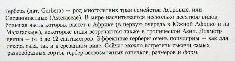 https://img-fotki.yandex.ru/get/198613/140132613.59a/0_21f28e_7bf635d1_XL.jpg