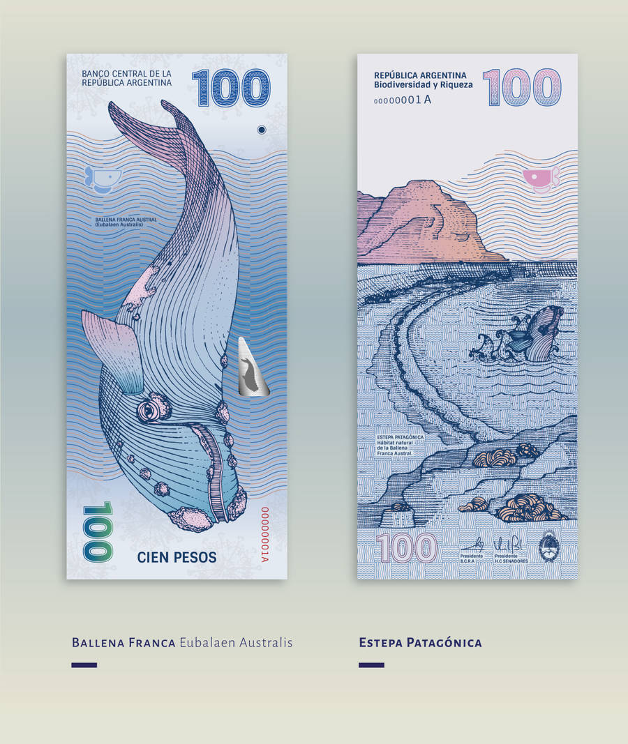 Beautiful Redesign of the Argentinean Bills