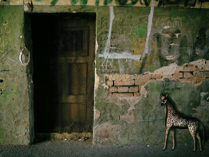Дверь и жираф Пиросмани