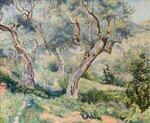 Les oliviers du cabanon, Toulon/The Olive Trees, Toulon