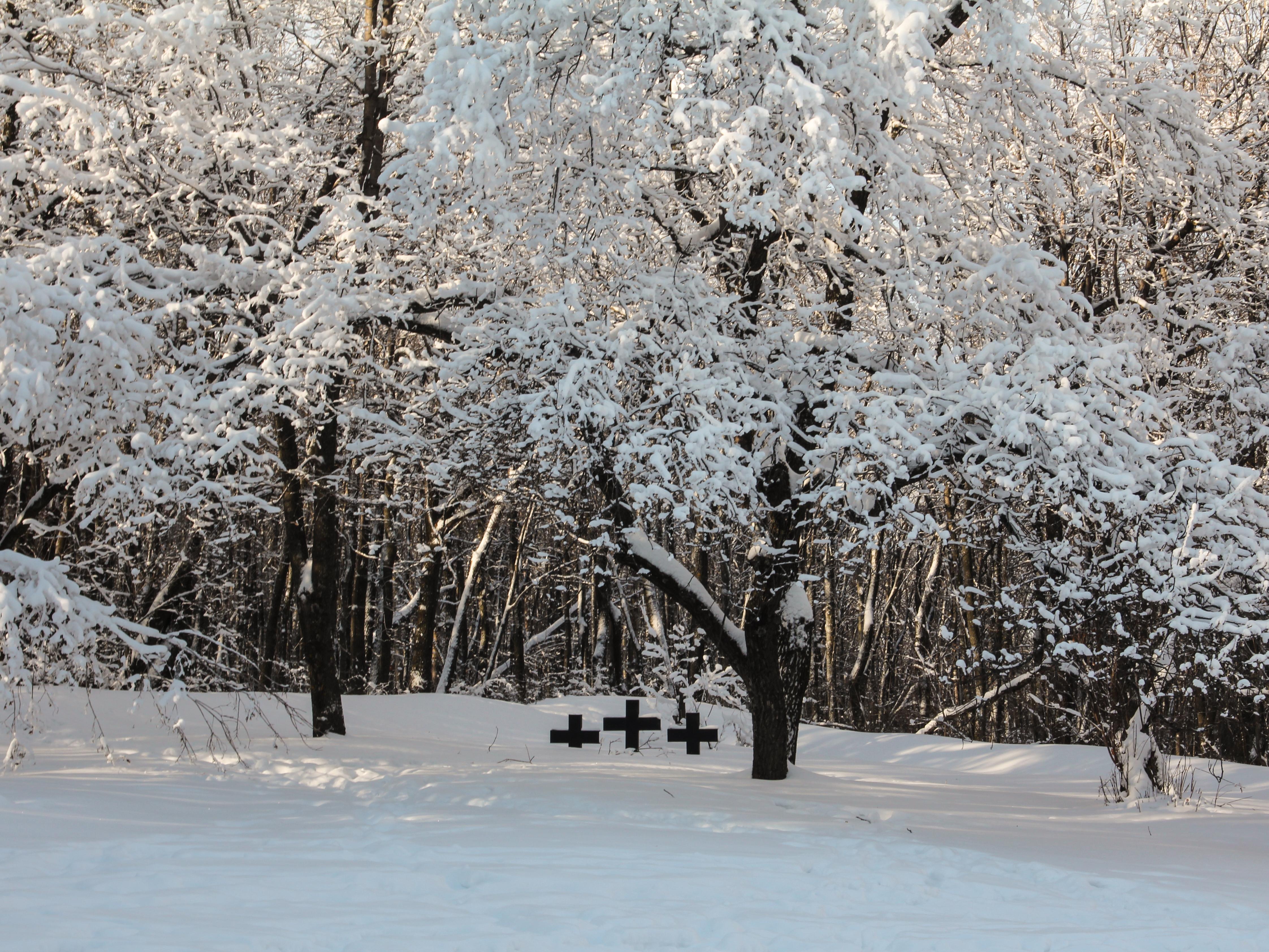 Венгерское (немецкое) кладбище на территории Кумысной поляны