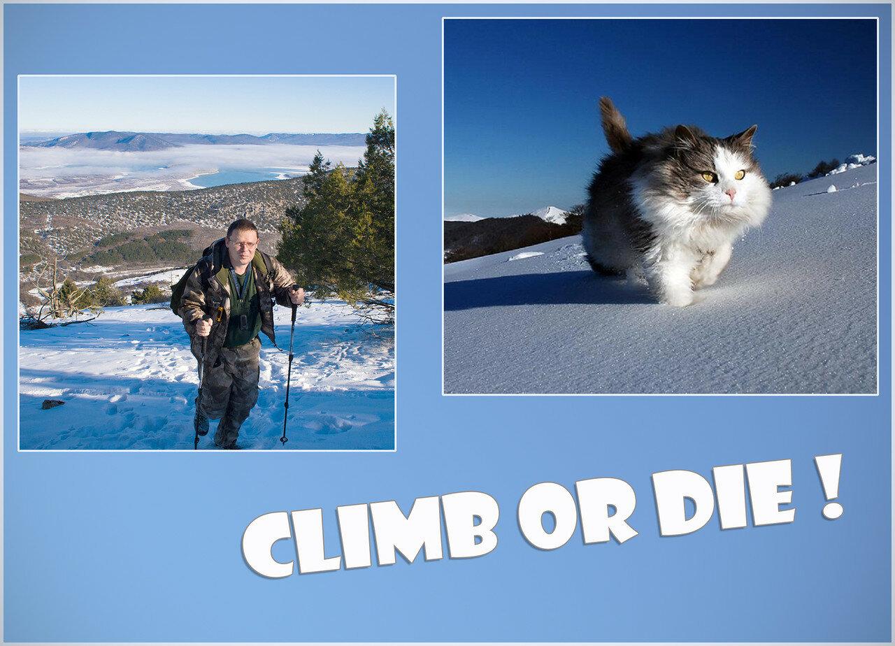Climb_or_die_у.jpg