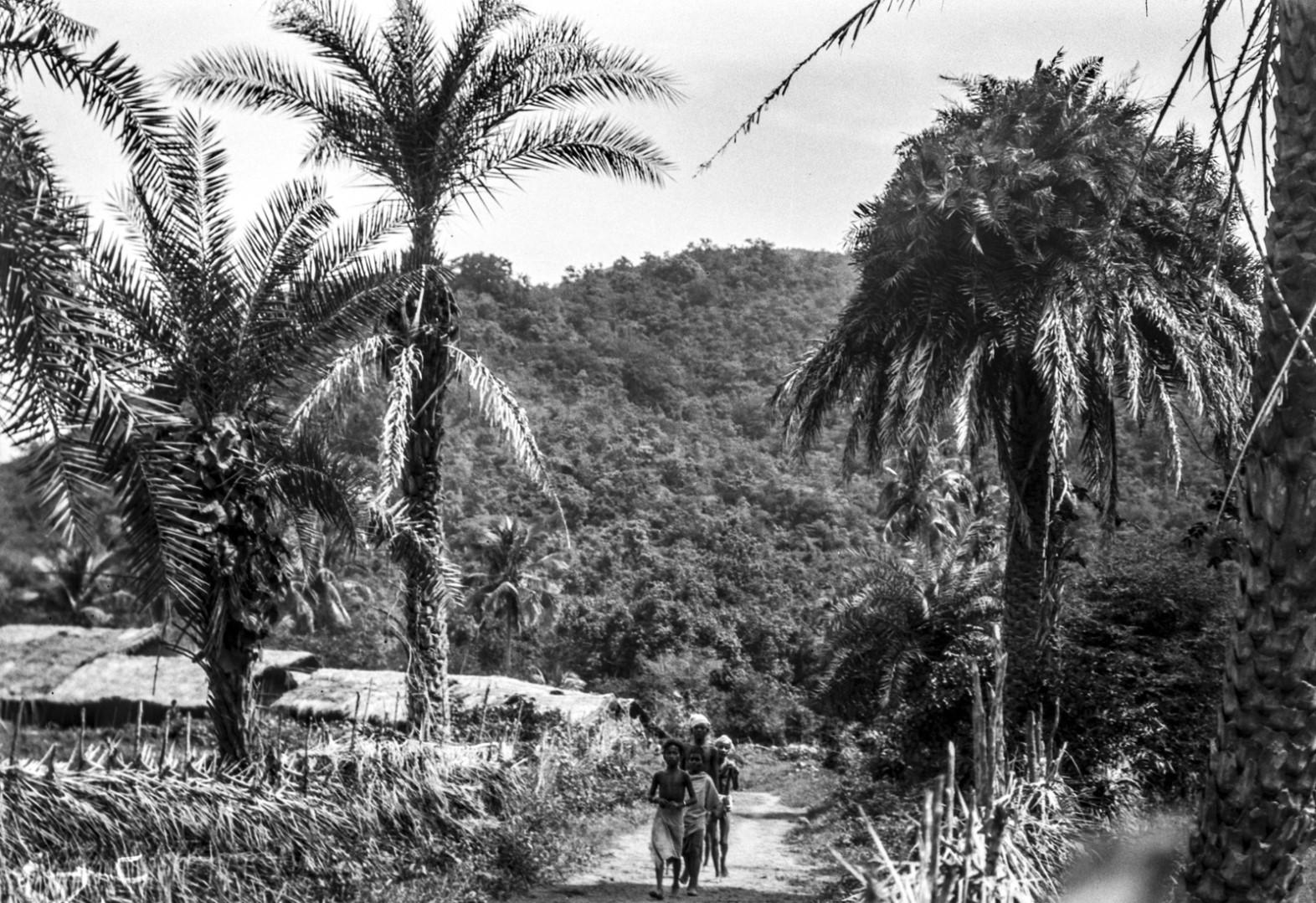 804. Гайба. Вид деревни с улицами и людьми