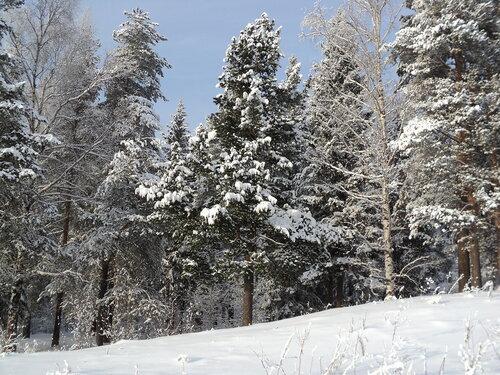 Снежные, таёжные,  уральские...
