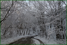 http://img-fotki.yandex.ru/get/198786/15842935.41c/0_f17fc_5d16214_orig.jpg