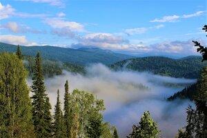 Туман в речной долине
