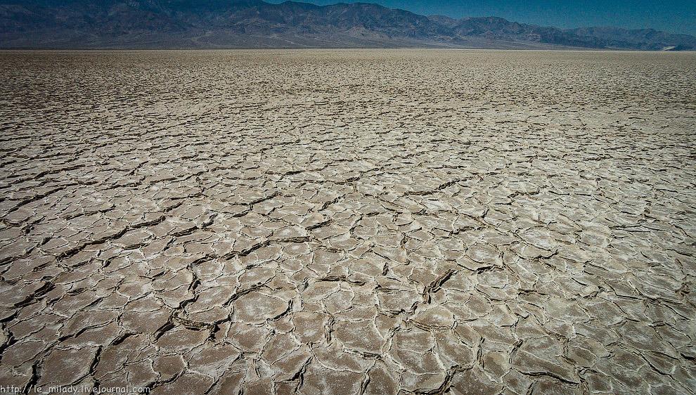 23. Огромное поле из таких вот соляных образований.