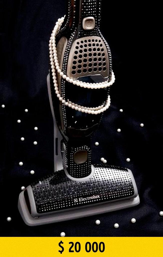 © electrolux.com  Этот пылесос незря попал вКнигу рекордов Гиннесса, ведь онсамый дорогой и