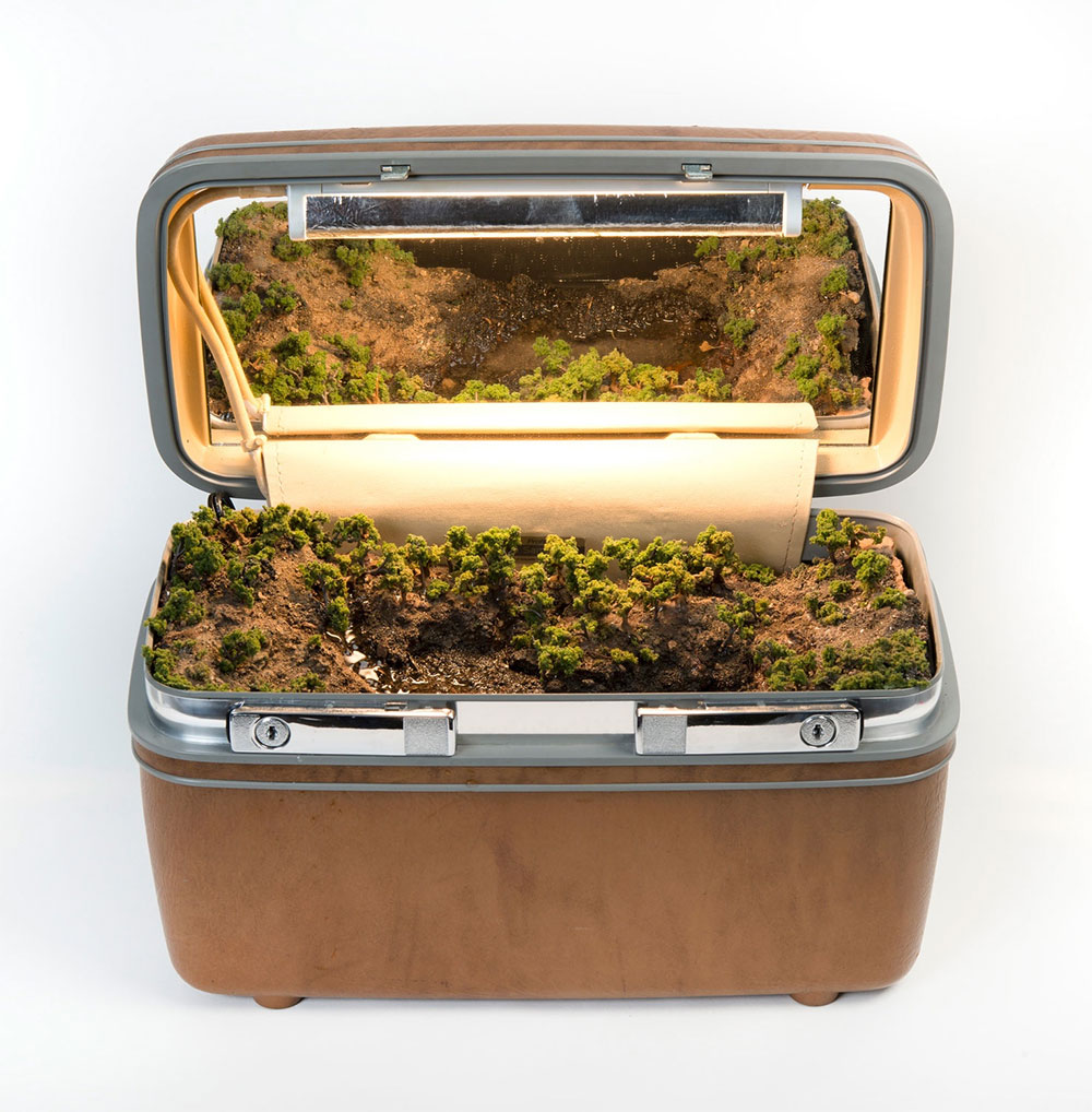 Traveling Landscapes: Miniature Ecosystems Tucked Inside Vintage Suitcases by Kathleen Vance (9 pics)