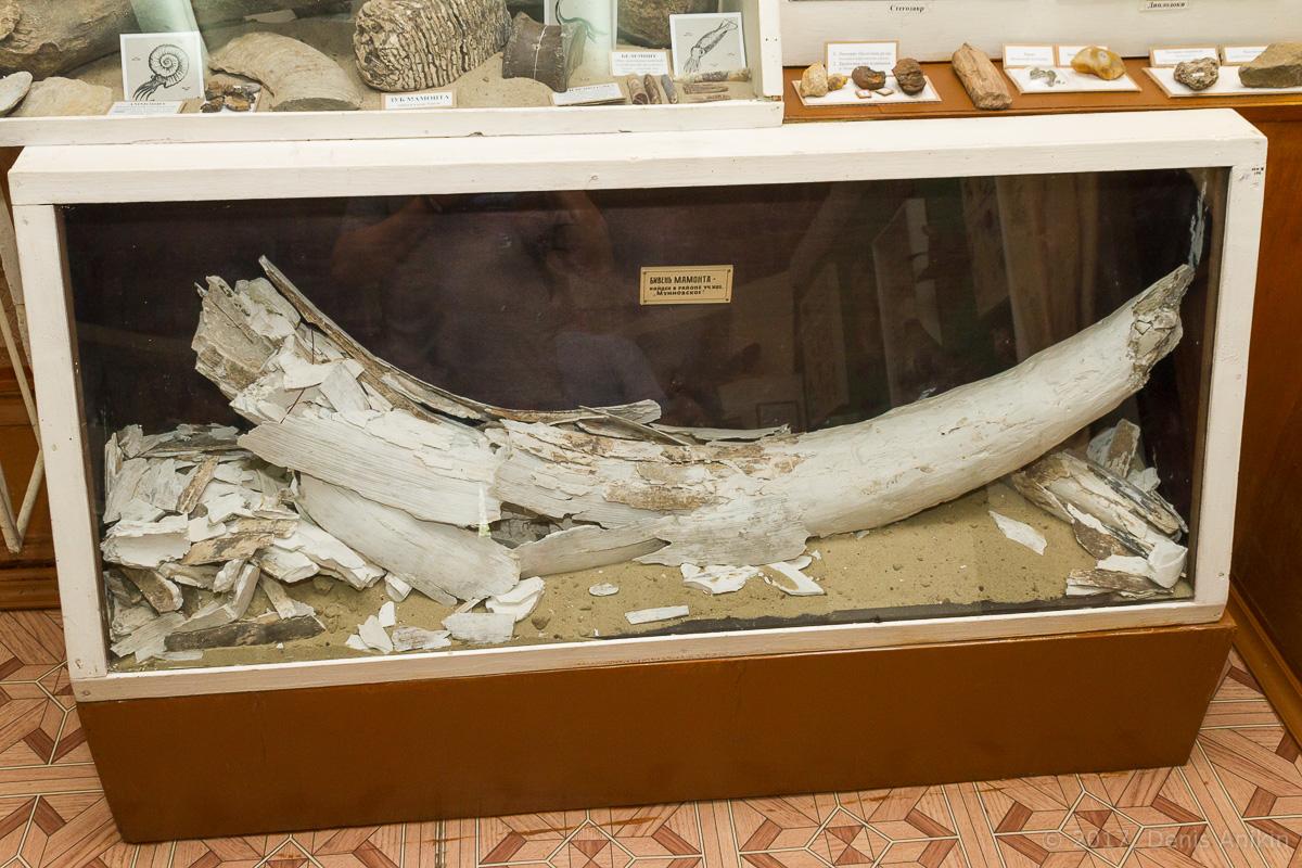 Аткарский музей краеведения фото 6