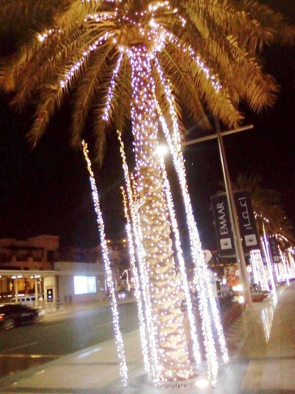 Привет из Дубаи. Ноябрь 2016.  005. Фотографии В. Лана.jpg
