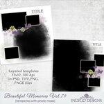 IndigoD_BeautifulMemoriesVol79_templates.jpg