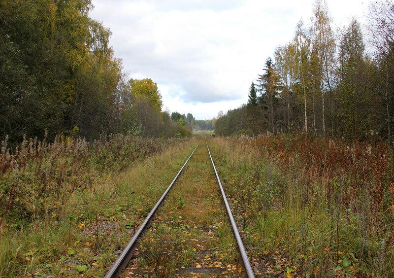 Неизвестный переезд на перегоне Овинище-2 - Весьегонск, дальше
