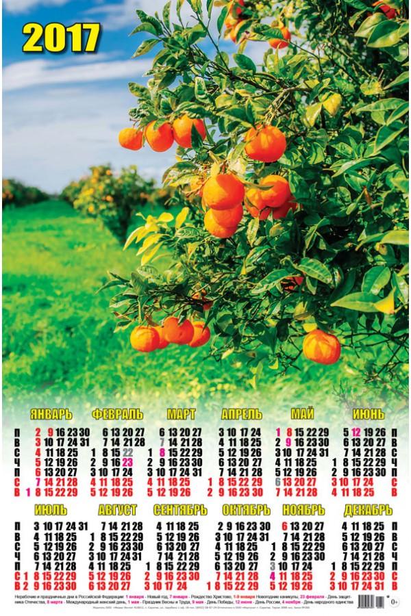 Календарь на 2017 г. Мандариновое дерево