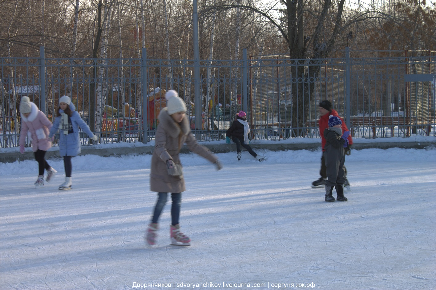Каток в парке ВГС - 10 января 2017