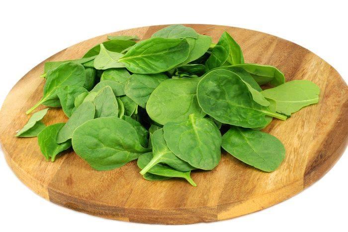 Большим разнообразием витаминов и минеральных веществ отличается шпинат. Яркие изумрудные листья на