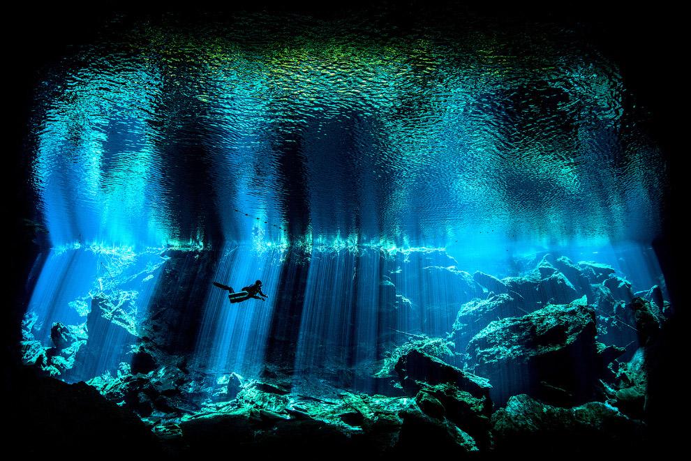 знали картинки с подводными чудес подобных удач стал