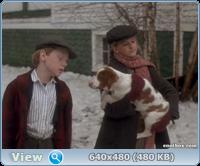 12 рождественских собак / The 12 Dogs of Christmas (2005/DVDRip)