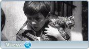 http//img-fotki.yandex.ru/get/198860/4074623.99/0_1bfe2a_edba9c8d_orig.jpg