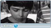 http//img-fotki.yandex.ru/get/198860/4074623.99/0_1bfe34_665faf7d_orig.jpg