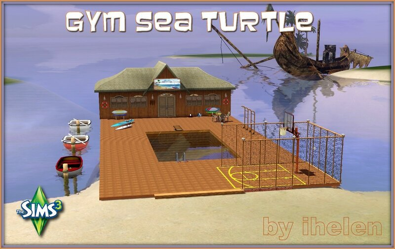 Gym Sea Turtle by ihelen