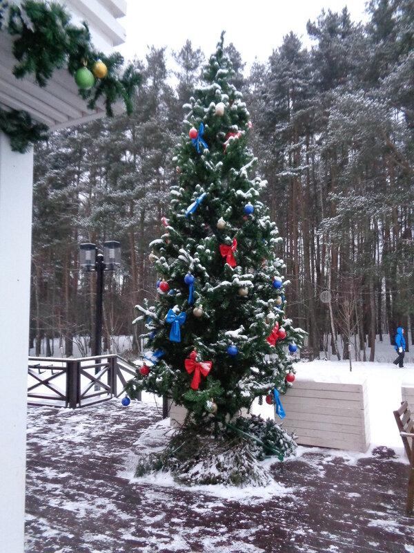 Новогодняя ёлочка у веселого бобра