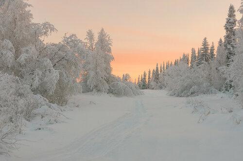 Морозный север