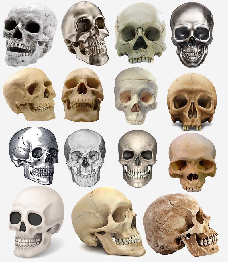 черепа, клип-арт, PNG на прозрачном фоне