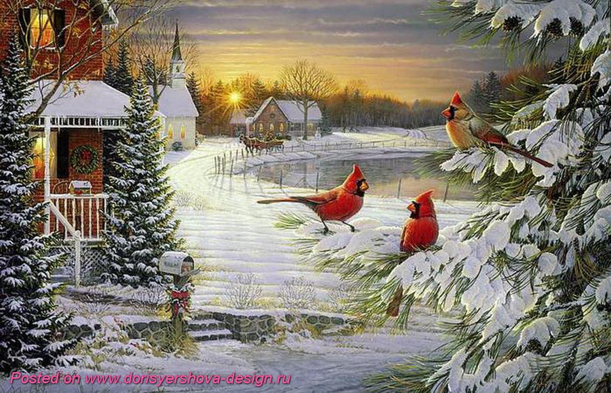 красный кардинал, птичка рождества, открытка