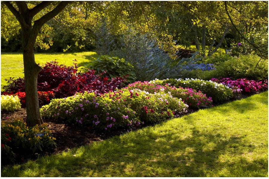 Сады Дюпона, сады Лонгвуд (Longwood Gardens) — примеры ландшафтного дизайна