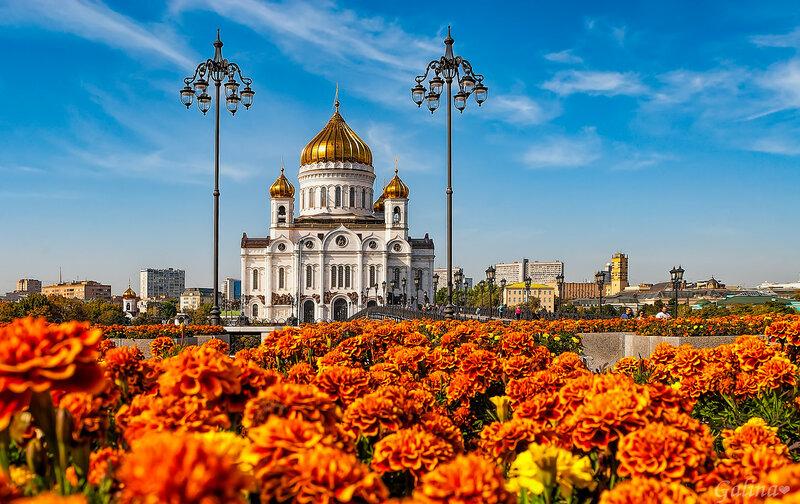 Храм Христа Спасителя и цветы