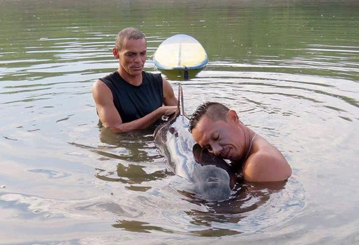 Монахи выкупили около 300 кг лобстеров и выпустили их в море