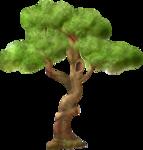 arbre1.png
