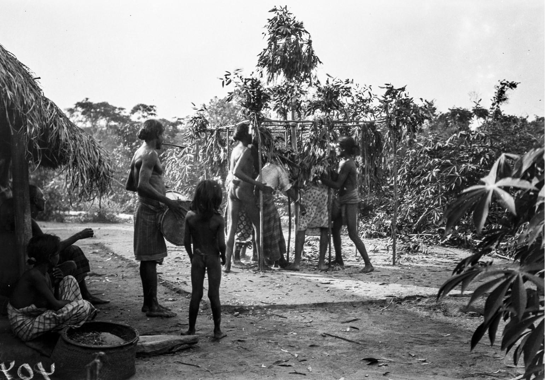388. Мадугалла. Ритуальный танец лесных веддов