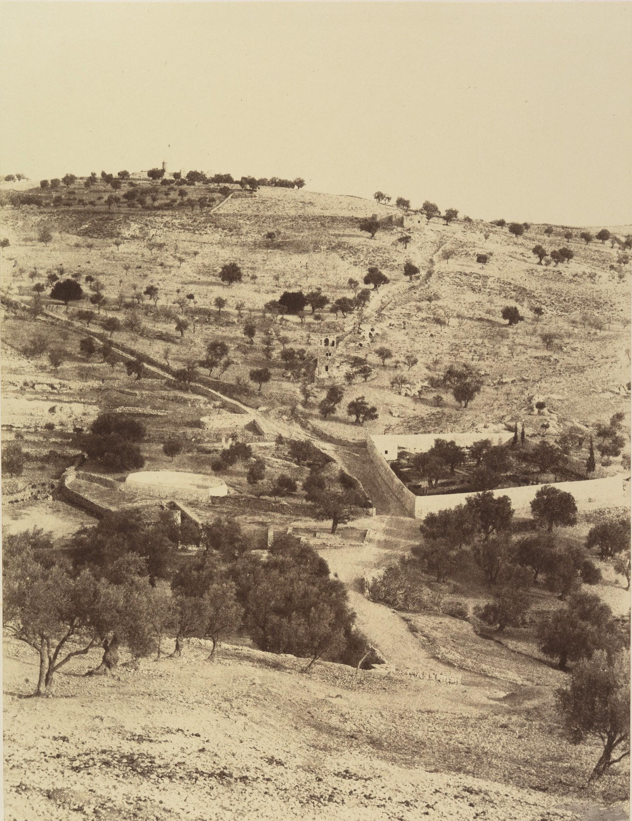 Гефсиманский сад и Масличная гора