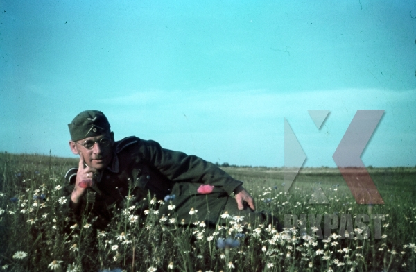 stock-photo-german-soldier-in-flower-field-in-smolensk-russia-1942-summer-hitler-moustache-with-glasses-and-hat-9194.jpg
