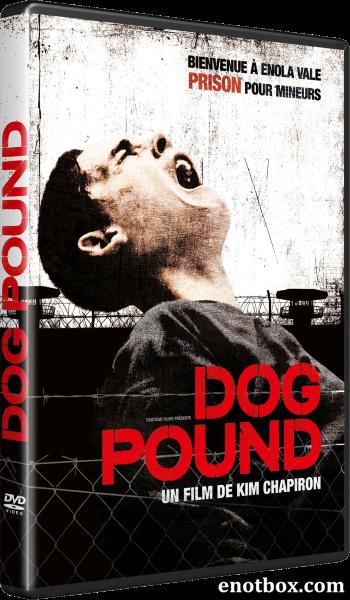 Загон для собак / Dog Pound (2009/BDRip/720p)