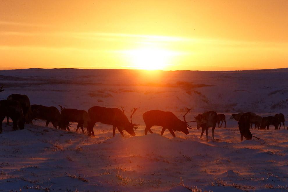 15. Местные красоты. (Фото Sergei Karpukhin | Reuters):