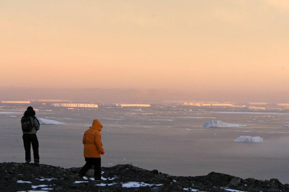 Средняя высота поверхности Антарктиды — самая большая из всех континентов.  Пингвины на оста