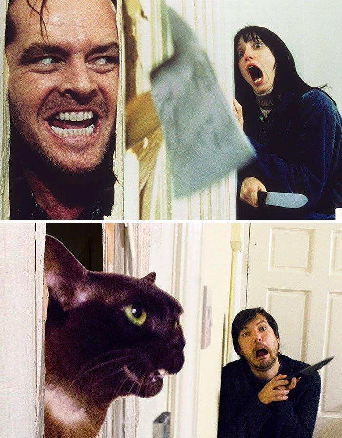 Англичанин с кошкой «пересняли» знаменитые кадры из фильмов