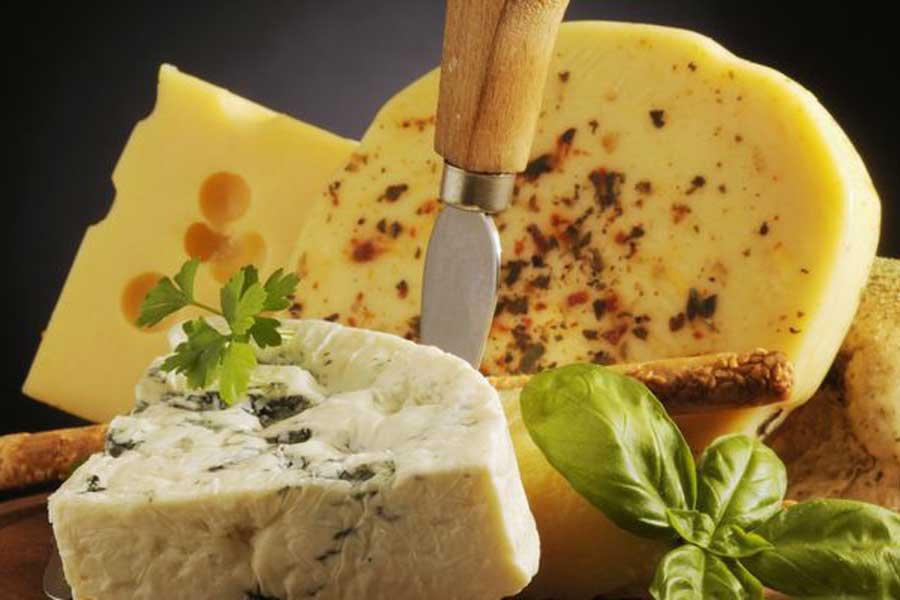Учёные узнали, как сыр сплесенью продлевает жизнь