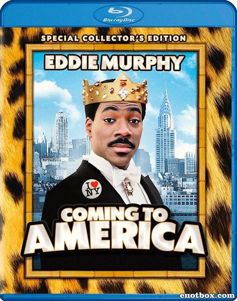Поездка в Америку / Coming to America (1988/BDRip/HDRip)