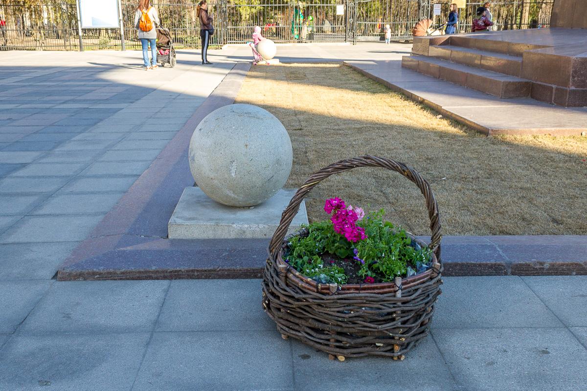 Волжская цветы фото 6