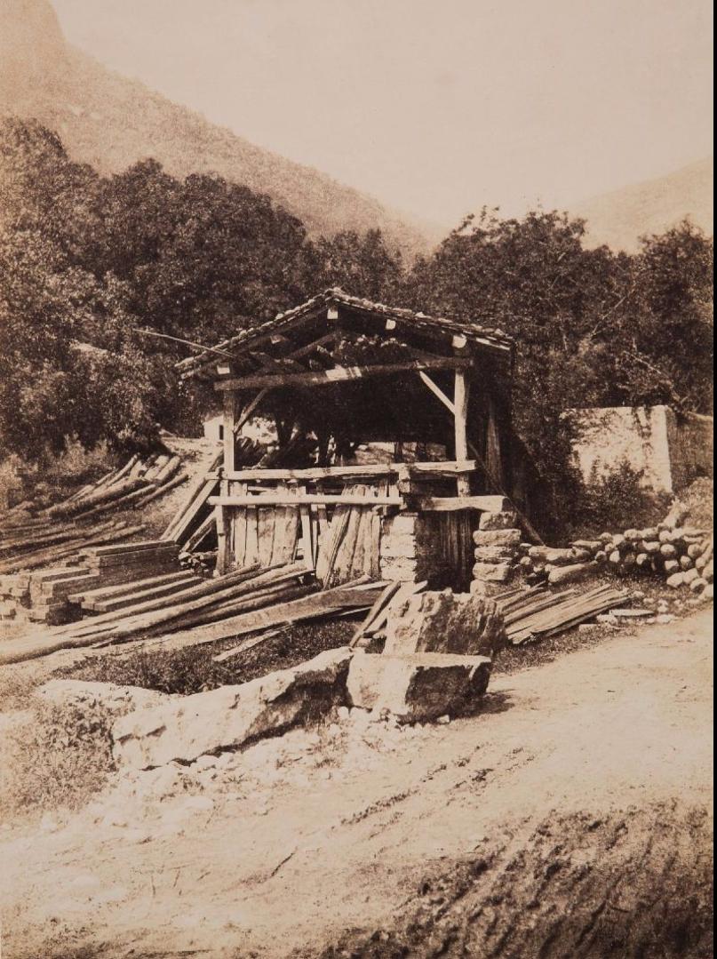 1855. Пилорама близ Лиона