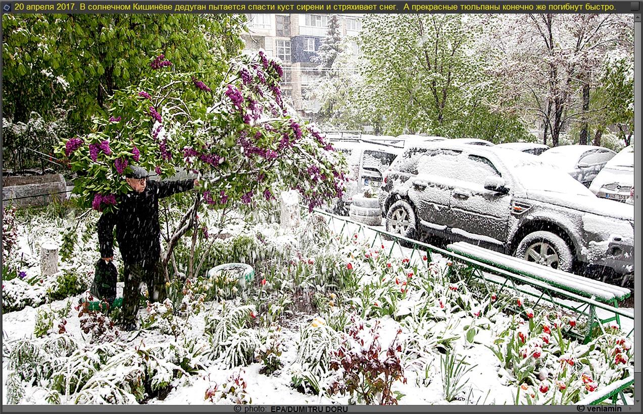 Кишинёв, снег в апреле, рамка, 20 апр. 2017,