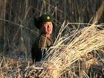 Северокорейский солдат собирает солому в поле в Синыйджу.jpg