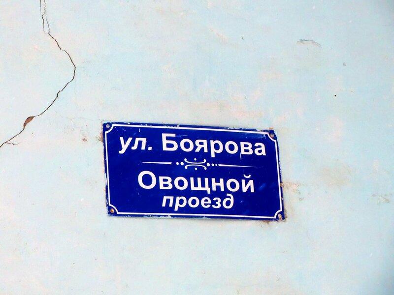 Заводское и авиционный бомбарь 015.JPG