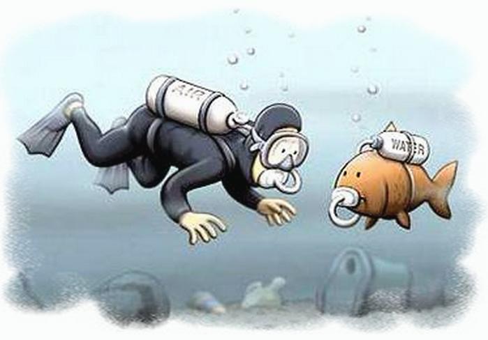 Смешные картинки о водолазах